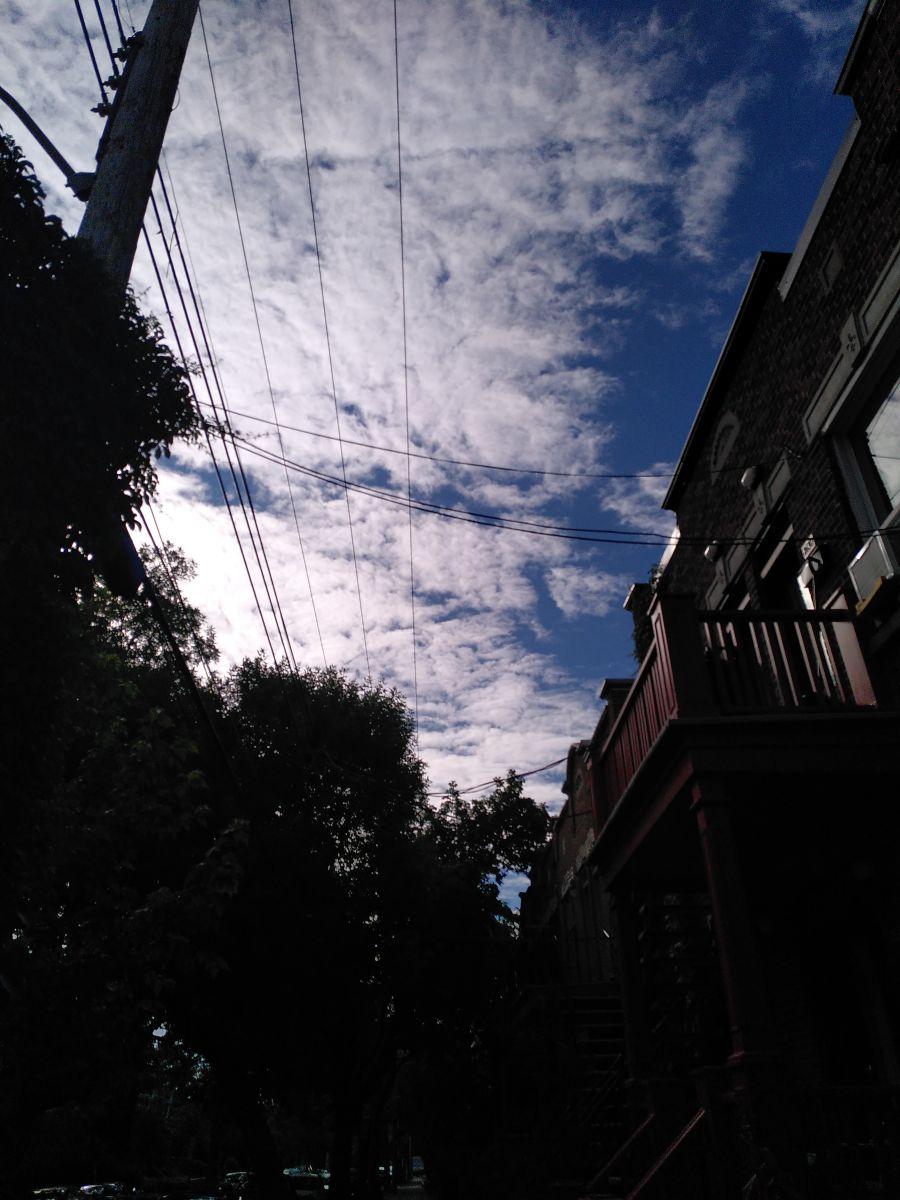 Photographe Koikoi, Photos météo à Montréal - Weawow