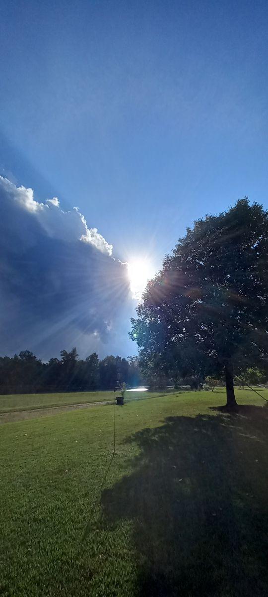 Photos météo à Monde. Prévisions météo avec de superbes photos de AndyT