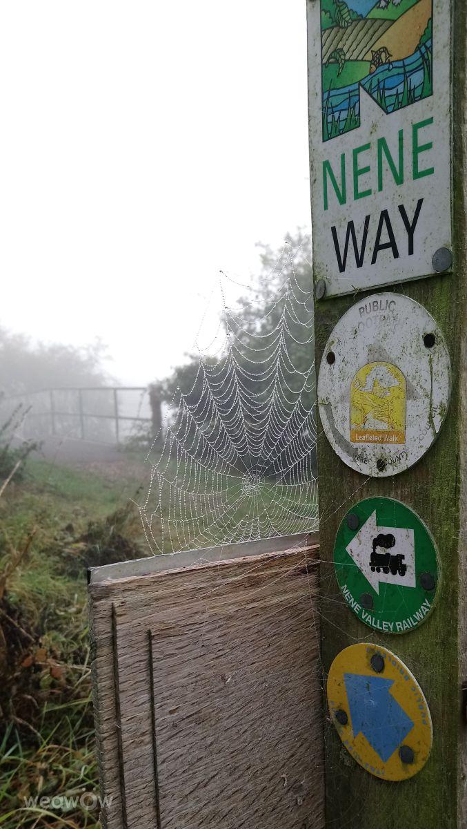 Photographe kns666, Photos météo à Nassington - Weawow