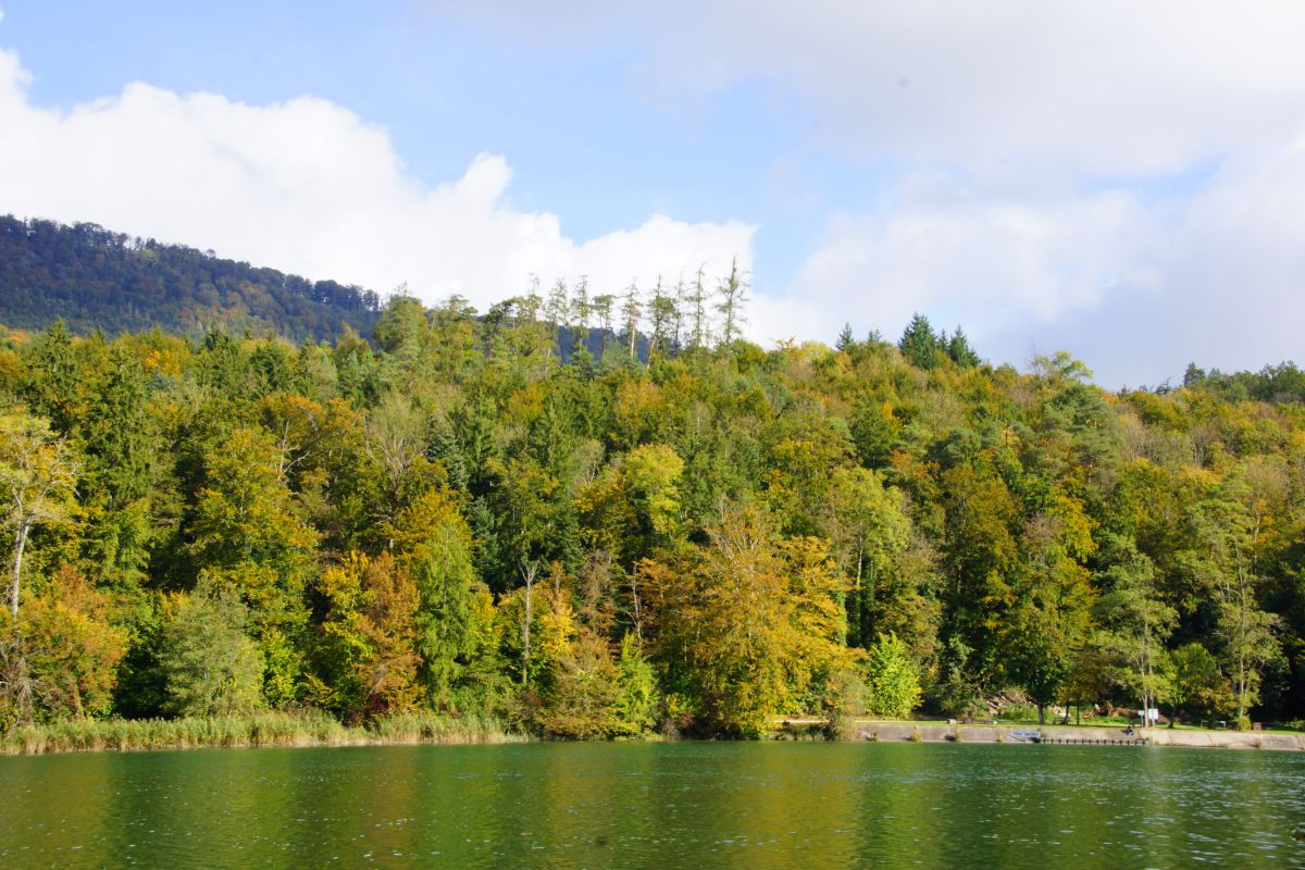 Photographe Ramseier, Photos météo à Oberentfelden - Weawow