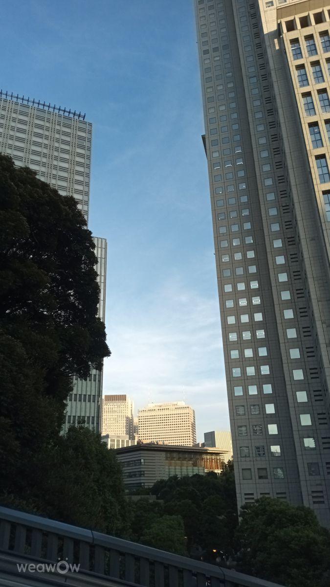 Photographer SUZUKI, Weather Photos in Tameike-Sanno Station - Weawow
