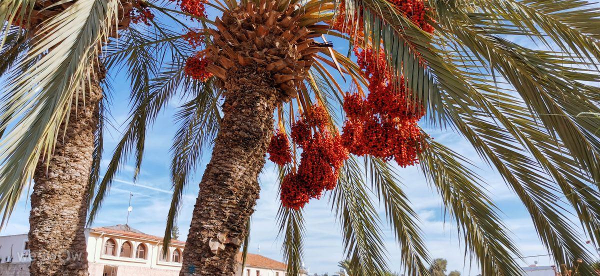 Hình ảnh Thời tiết ở Famagusta. Dự báo thời tiết với những bức ảnh đẹp của Andrey  efimov