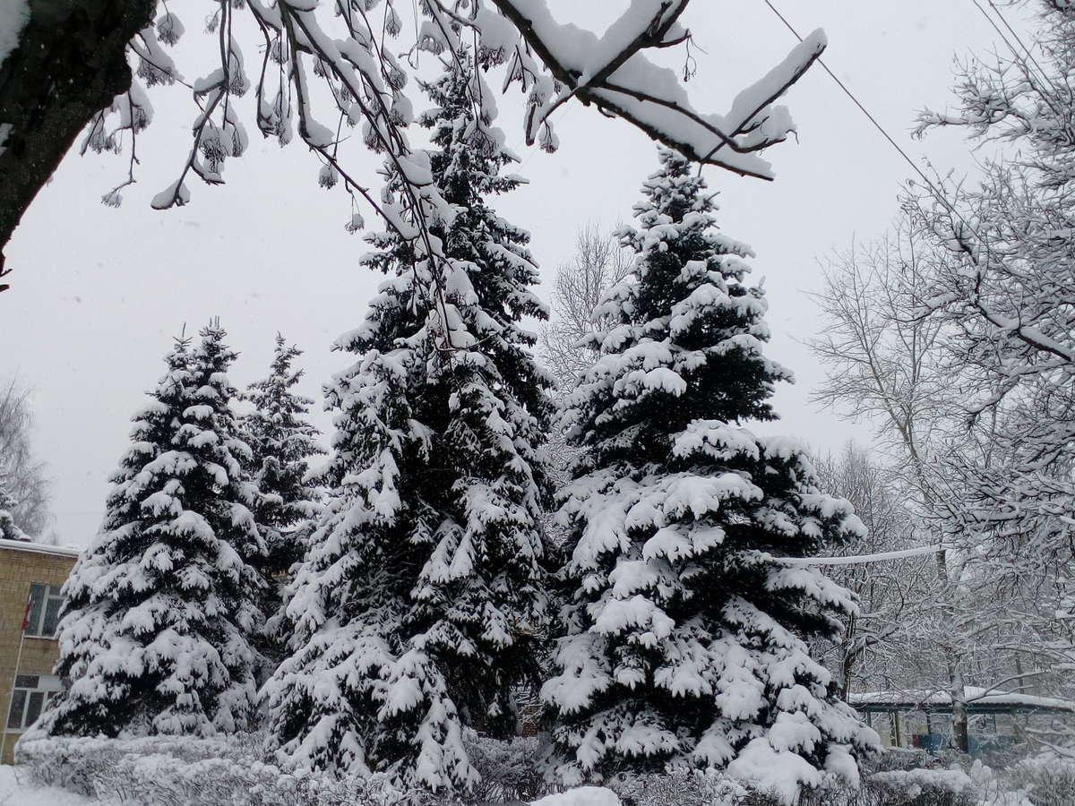 Fotos do tempo em Stupino. Previsões do tempo com lindas fotos de Maxim_Suslov