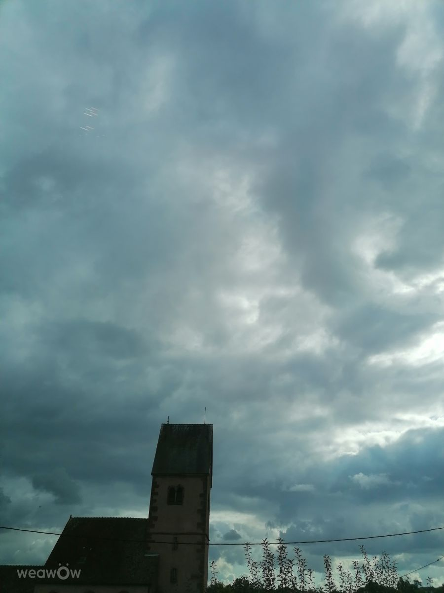 Photographe Tiffanie67, Photos météo à Wolfisheim - Weawow
