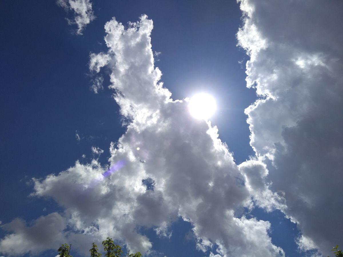 写真家 Héctor Emmanuel Morales、Bosque Peralta Ramosの天気写真 - Weawow
