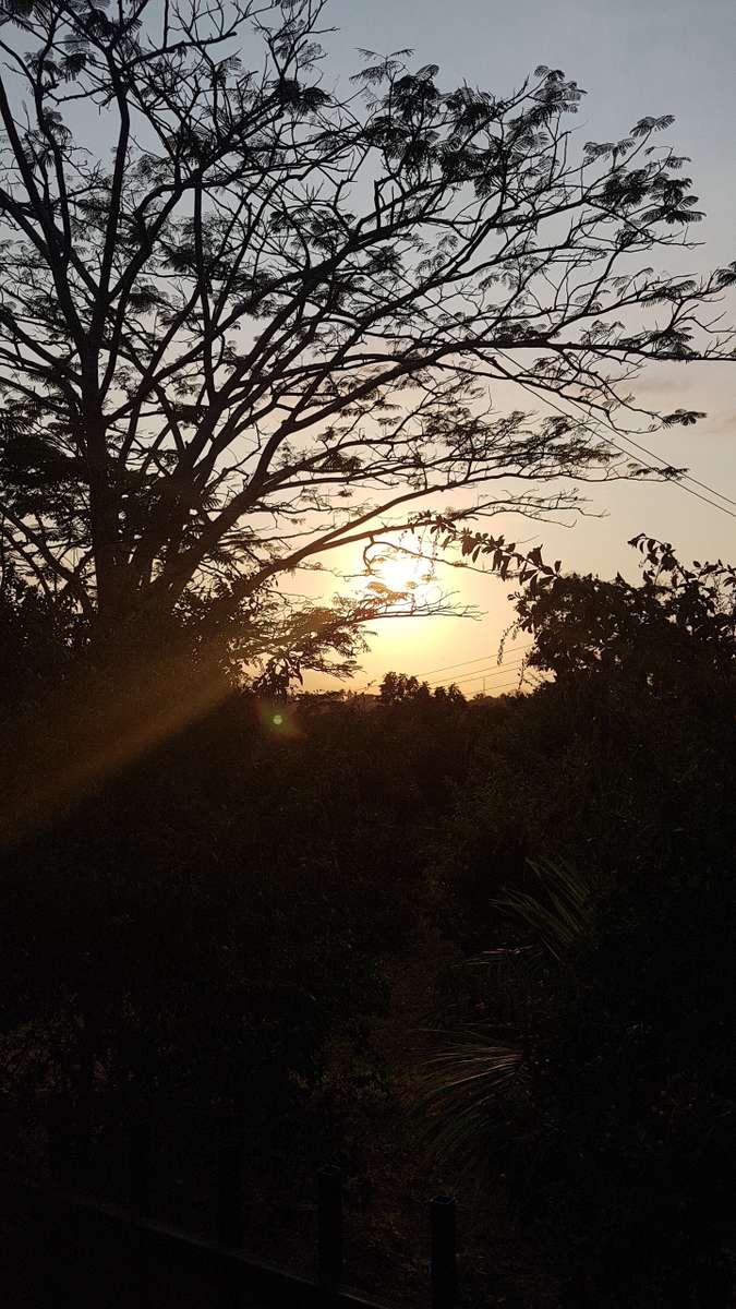 Fotos do tempo em Awasa. Previsões do tempo com lindas fotos de Sige Chingalame