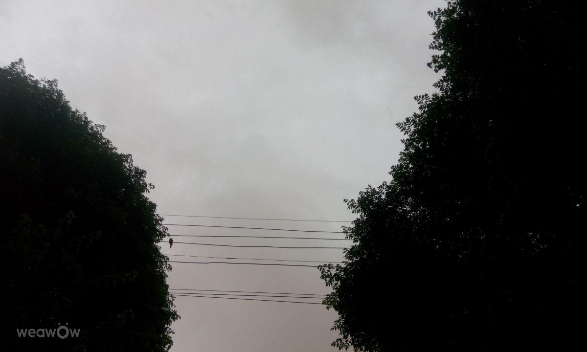 安曼的天气照片. 天气预报,带HAMZEHHAMATO精美的照片