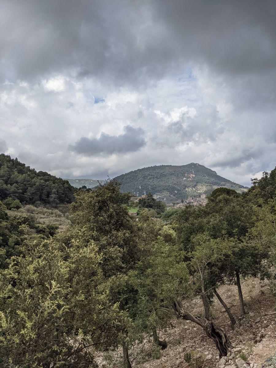 Photographe PedroPanetti, Photos météo à Valldemossa - Weawow
