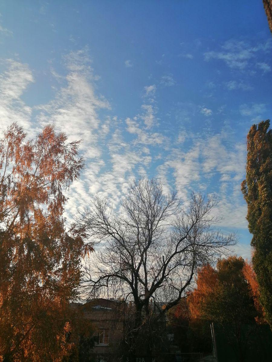 Fotos sobre el clima en Mercado. Pronósticos del tiempo con hermosas fotos de Inna_Bezrukova