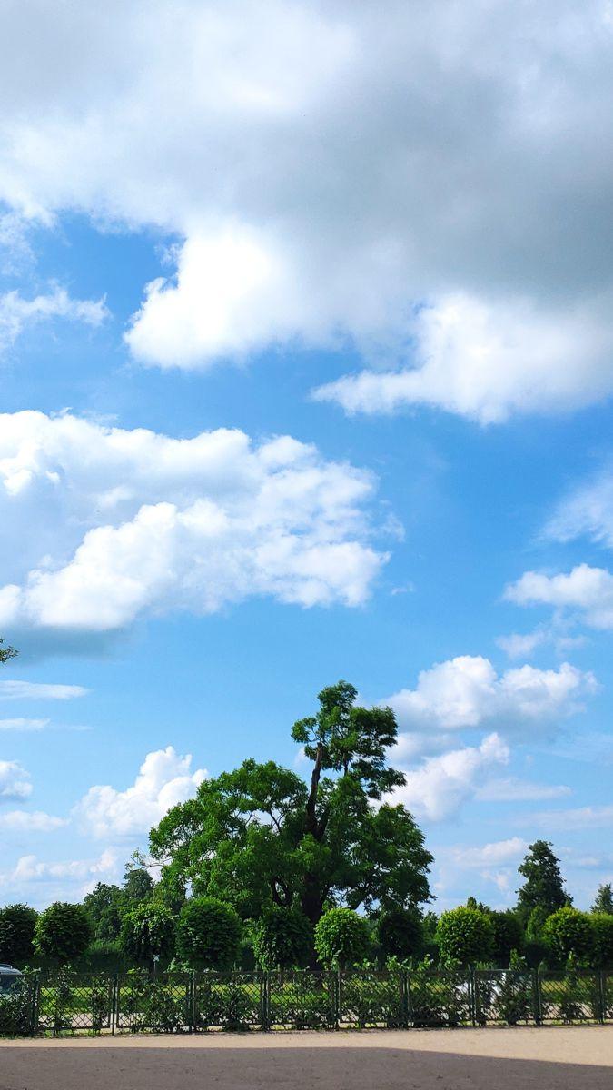 Fotos do tempo em Pilsrundale. Previsões do tempo com lindas fotos de newgen