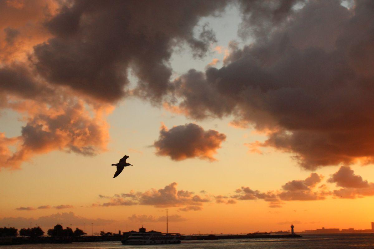 写真家 Sheni、イスタンブールの天気写真 - Weawow