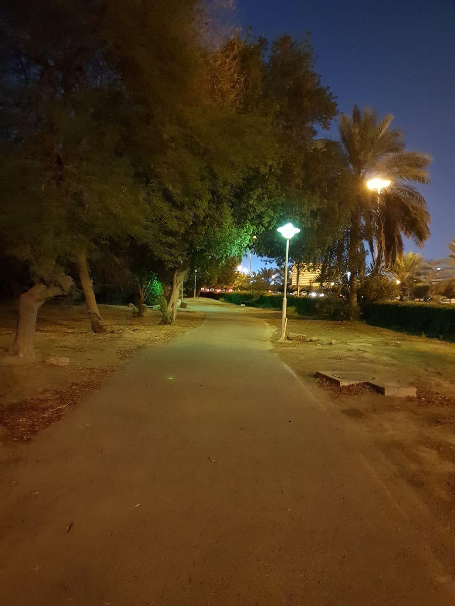 科威特市的天气照片. 天气预报,带turaf精美的照片