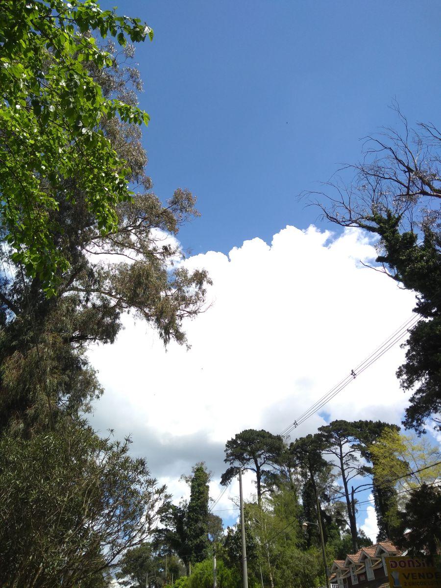 写真家 Héctor Emmanuel Morales、Mar del Plataの天気写真 - Weawow