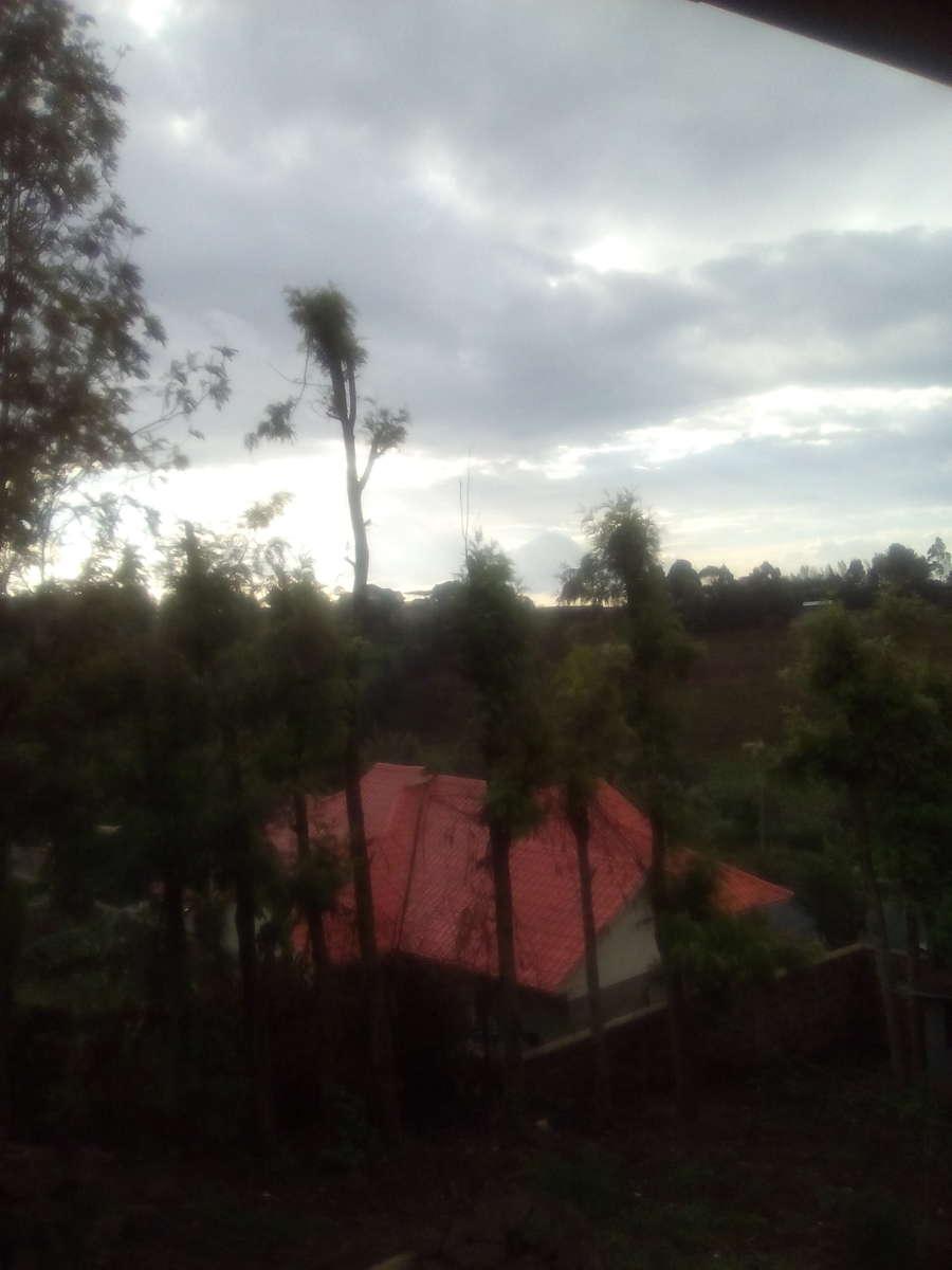 奈洛比的天气照片. 天气预报,带Milkah Wamuyu精美的照片
