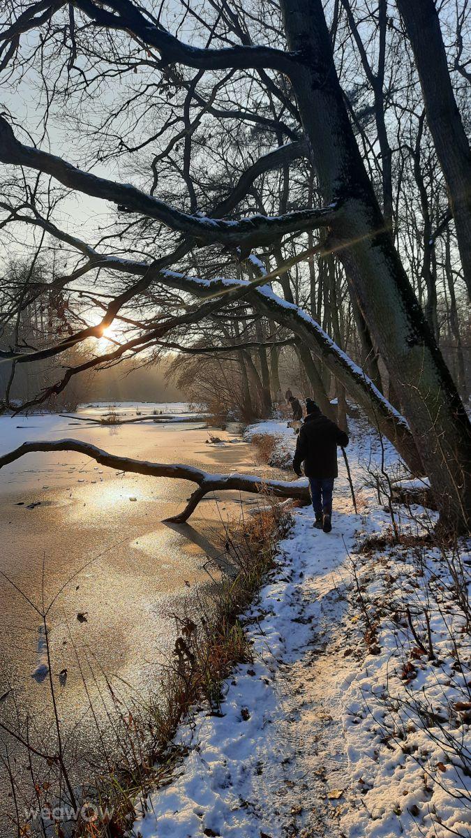 Photographe Mirandel, Photos météo à Las Dębiński - Weawow