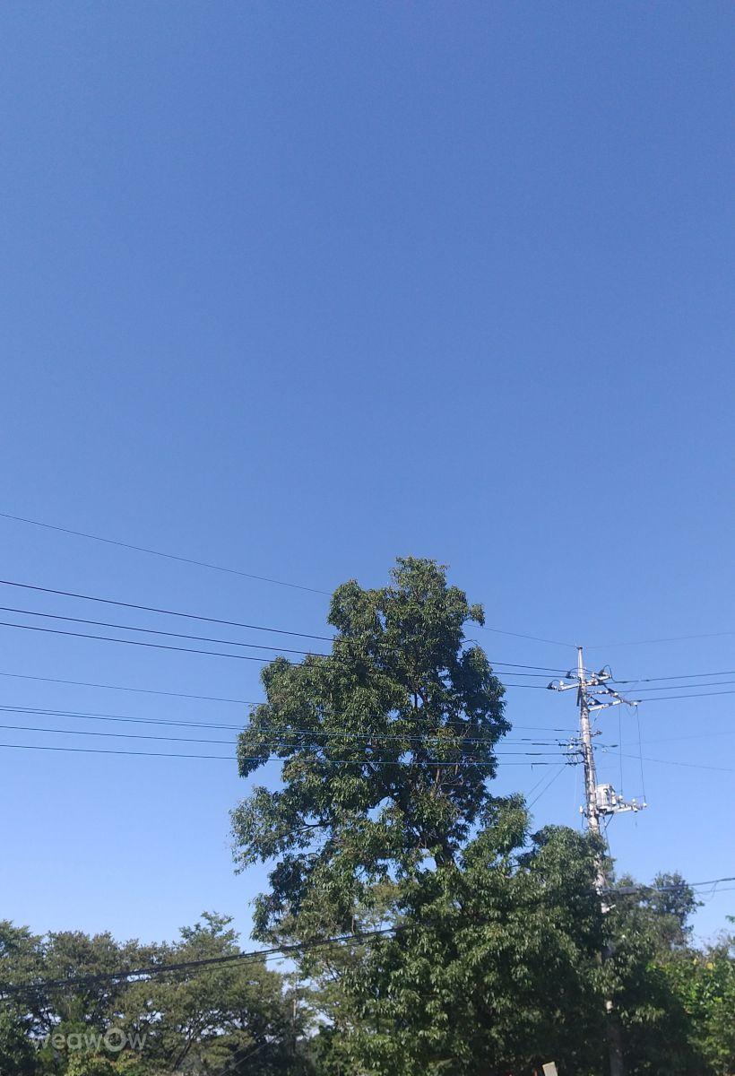 写真家 siesta、横瀬の天気写真 - Weawow