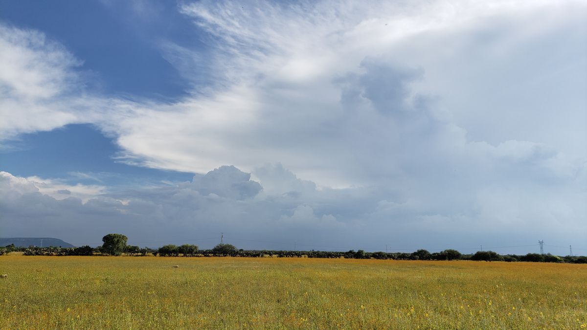Fotógrafo Jesus_Avs, Fotos sobre el clima en Aguascalientes - Weawow
