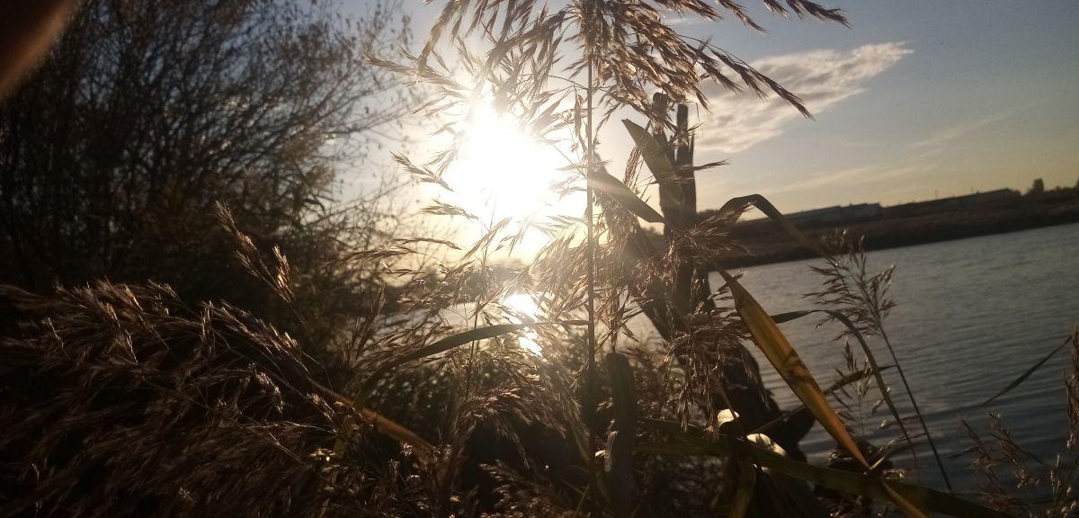 写真家 belkaserega90、Sadovaya Ulitsaの天気写真 - Weawow