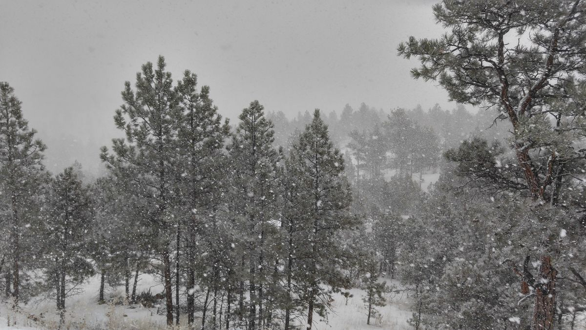 Weather Photos in Helena. Weather forecasts with beautiful photos by Belfordl