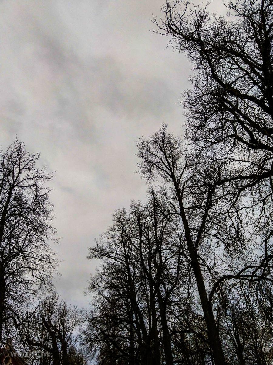 Fotos do tempo em Pilsrundale. Previsões do tempo com lindas fotos de Luka