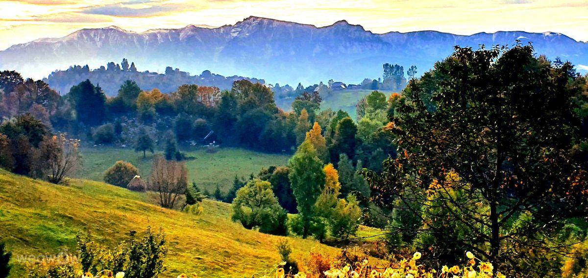Photographe Bogdan_Parlici, Photos météo à Măgura - Weawow