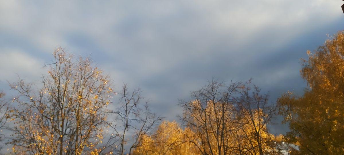 写真家 Gumbelevichene、Ķengaragsの天気写真 - Weawow