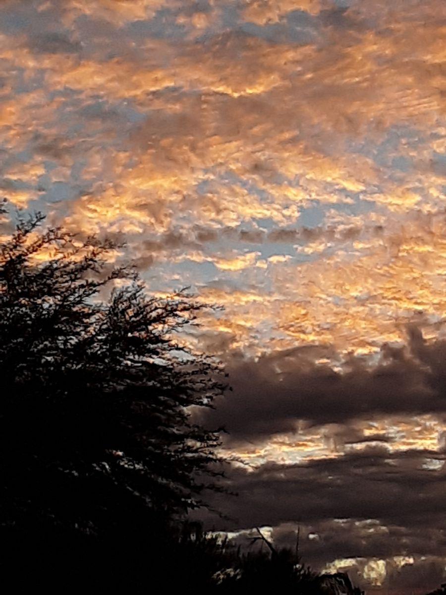 Photographe sungrinns, Photos météo à Glendale - Weawow