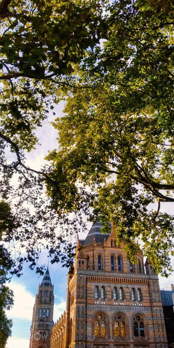 写真家 Evgen Harkusha、ロンドンの天気写真 - Weawow