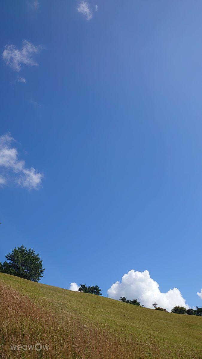 Photographe Shoko, Photos météo à Motoyamachomori - Weawow