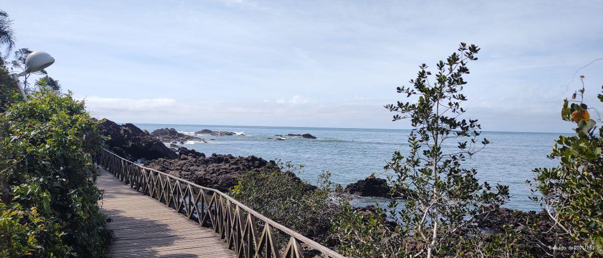 Hình ảnh Thời tiết ở Santa Catarina. Dự báo thời tiết với những bức ảnh đẹp của Senaxy