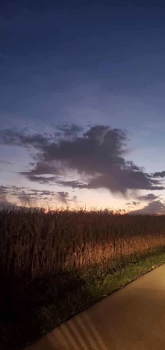 Pronósticos del tiempo con hermosas fotos de JBarnes