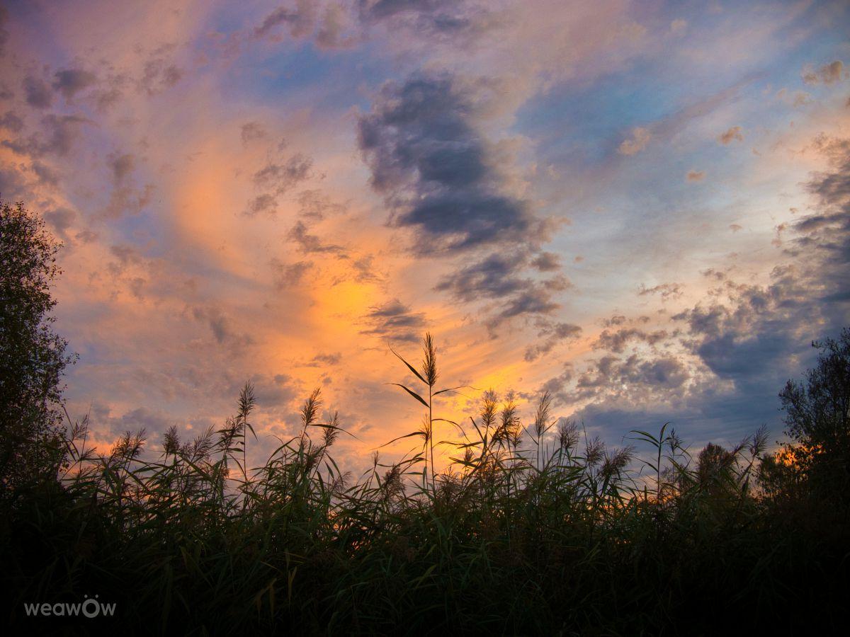 マーケットプレイスの天気写真. Li-Broの美しい写真による天気予報