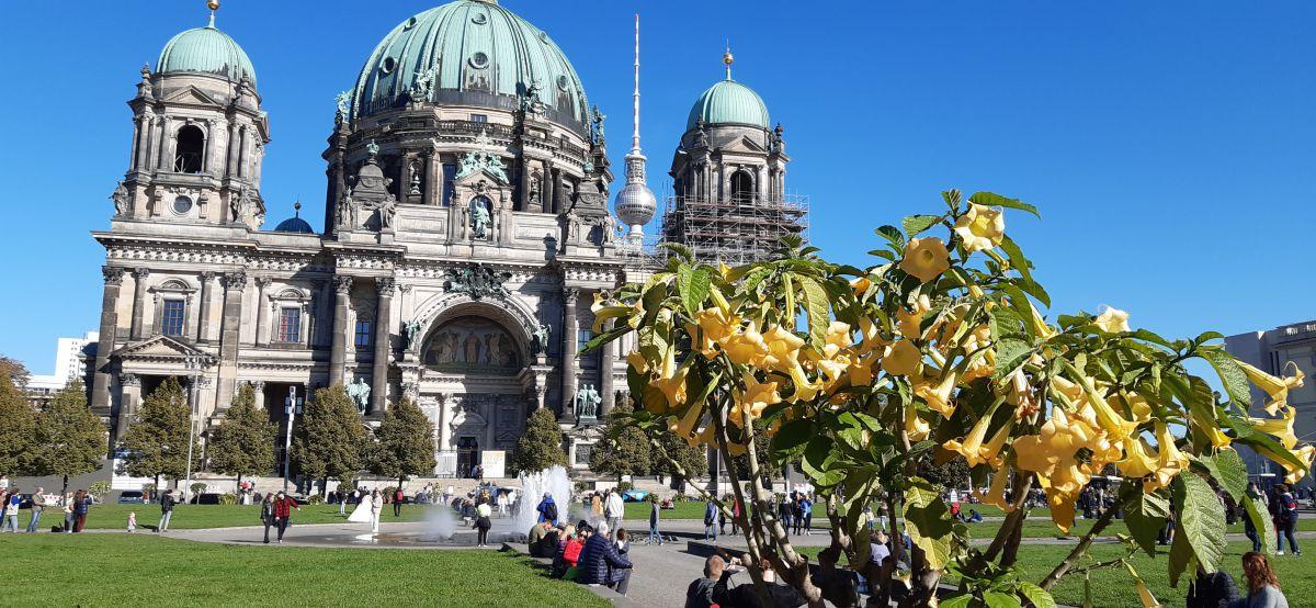 Fotógrafo Lalio Falmer, Fotos sobre el clima en Berlin Cathedral Church - Weawow