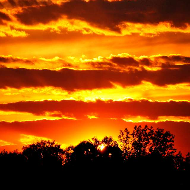 Morton Sunset 3
