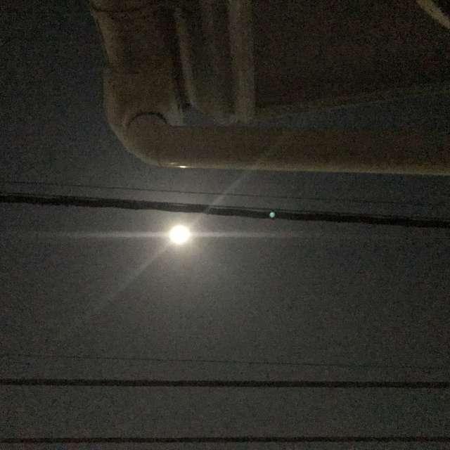 この光、いつものお月様と違う?! スーパームーン
