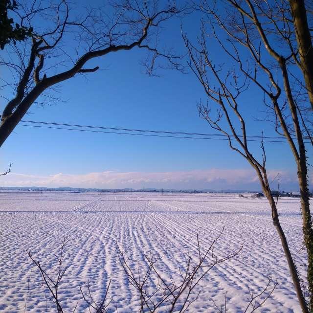 Snow scene ♪