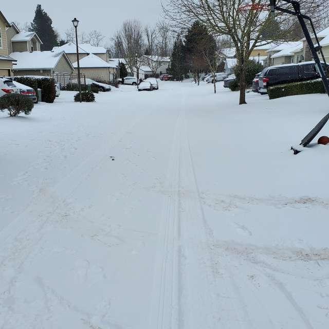 Snowy day in Portland