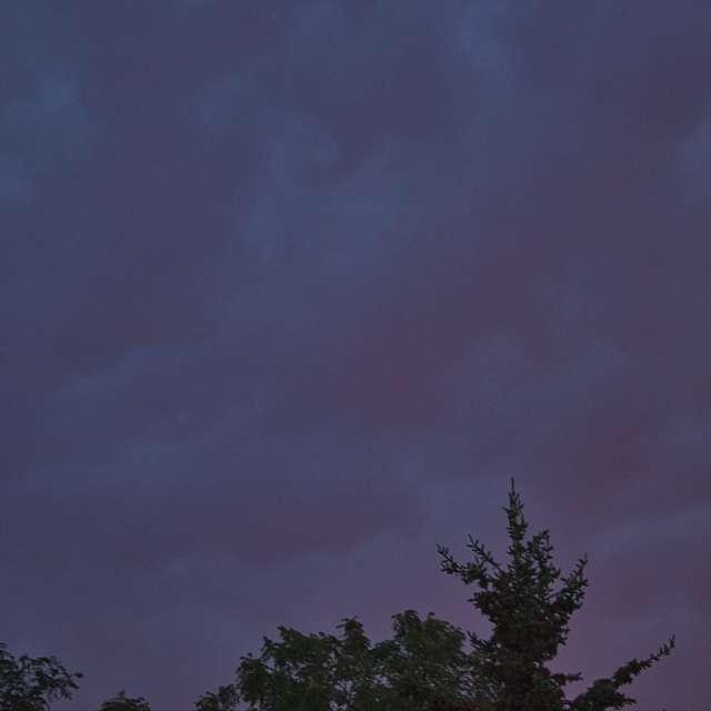 Overcast evening