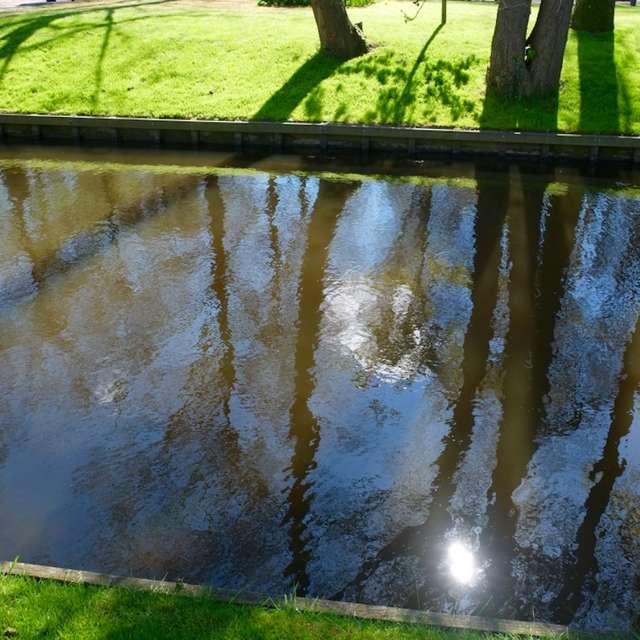 キューケンホフ公園の水辺