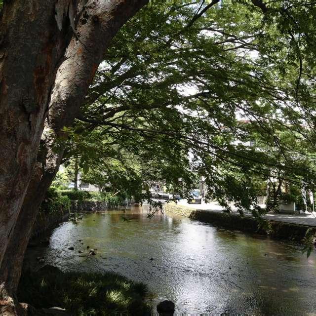 湧水公園 Water Park 1