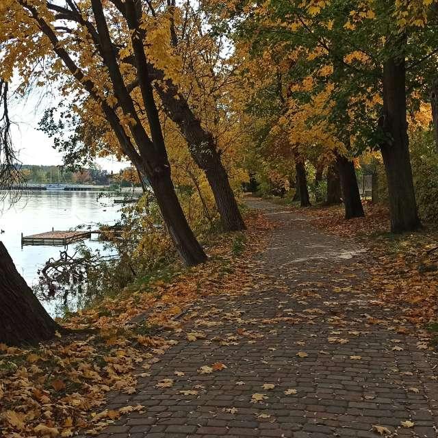 Autumn, Poland.