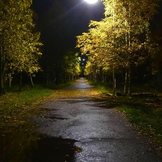 Ночь. Улица. Фонарь...
