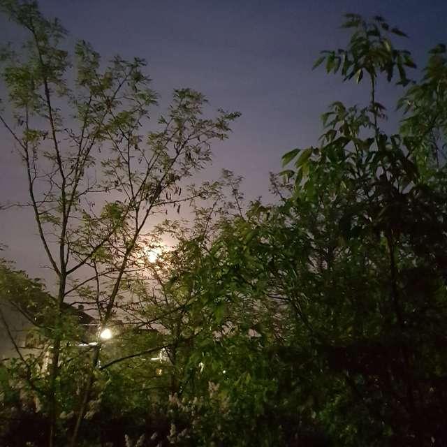 Moon &light
