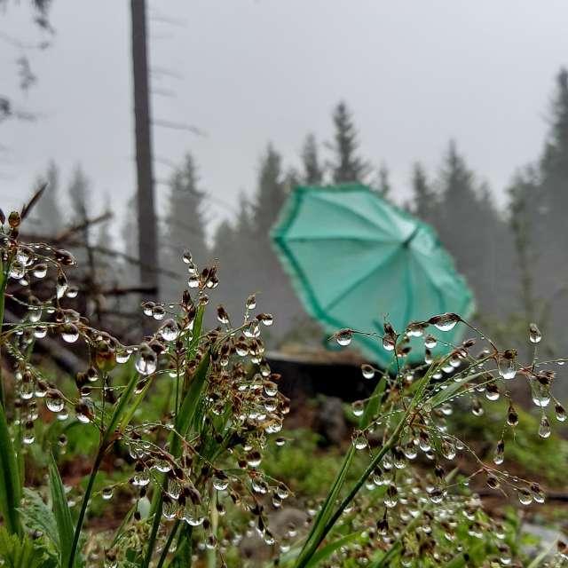 ...and raining and raining