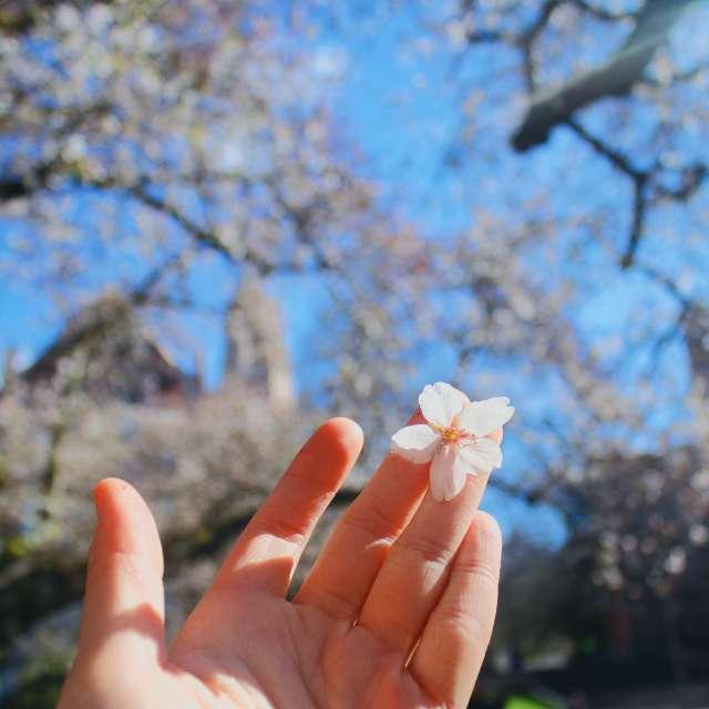 Spring cannot be far away