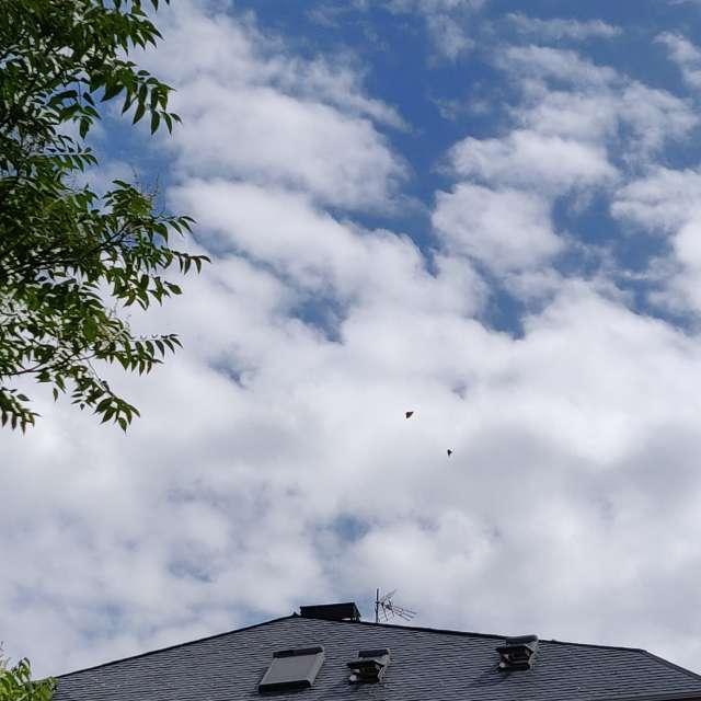 Nubes blancas amenaza tormenta