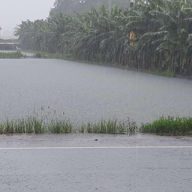 下雨持續積水情況