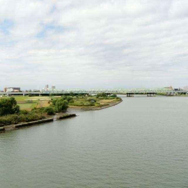 新荒川大橋より隣の鉄道橋を撮影
