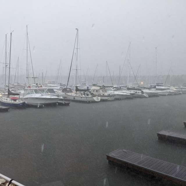 Rainy Marina