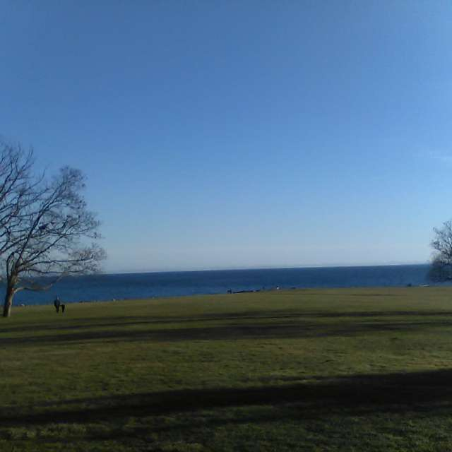 Harkness on a Beautiful Day!